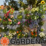 Vertical garden planting ideas