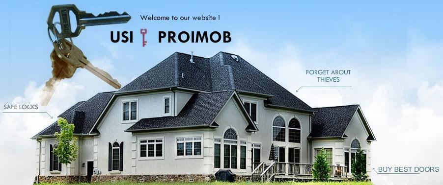 Company Proimob Intermed. Description and contact information.