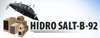 Company Hidro Salt-B-92. Description and contact information.
