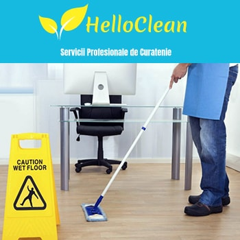 Company Hello Clean. Description and contact information.