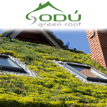 Company ODU Green Roof. Description and contact information.