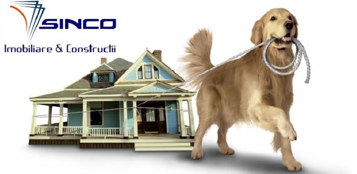 Company Sinco Construction. Description and contact information.